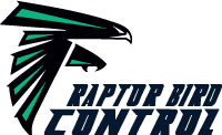 cropped-raptor-bird-control-logo-1.png